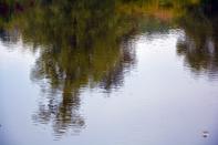 Les reflets sur l`eau offrent un monde magigue qui met en émoi ma passion photohraghique et le développement de mon art numérique - Frissonnements dans un monde à l`envers - François-Régis Hoareau
