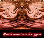Effets miroir par jeux de symétrie ou autre images colorées numériques et digitales, graphismes et infographie par François-Régis Hoareau